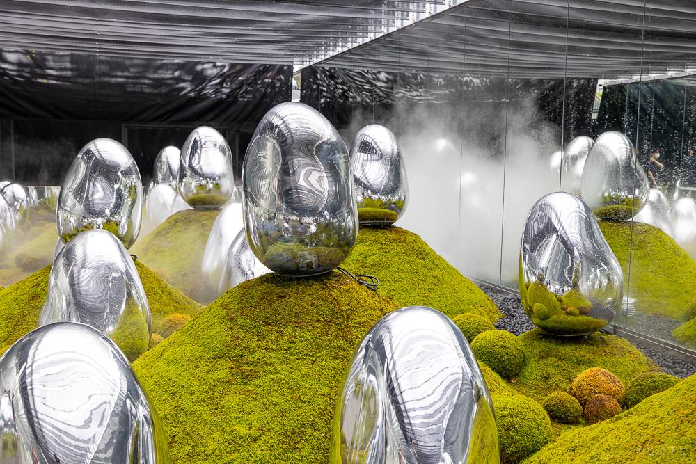 チームラボプラネッツ 呼応する生命の小宇宙の苔庭