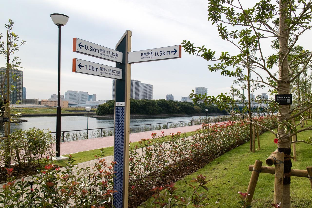 豊洲市場周辺の豊洲ぐるり公園