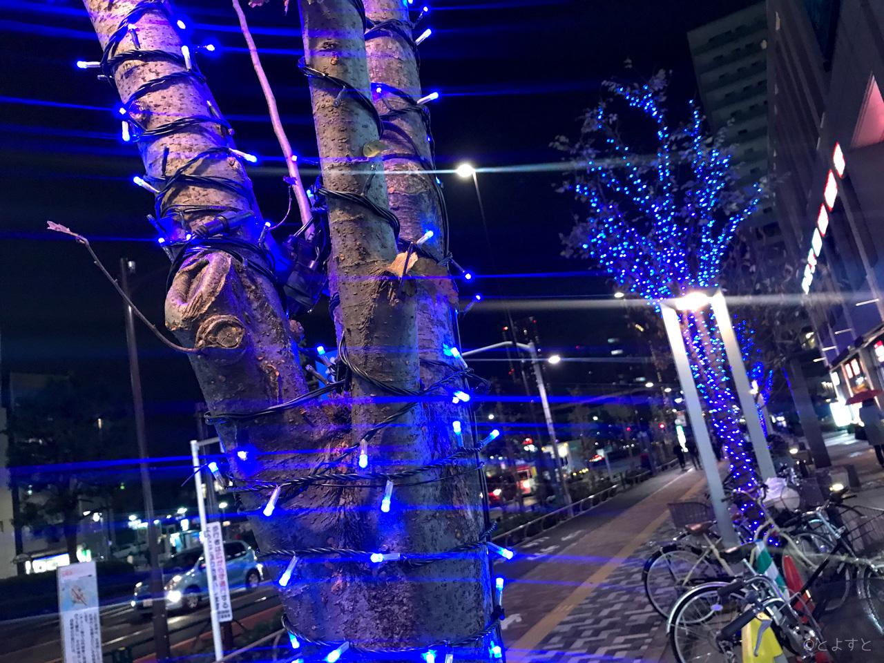 豊洲、クリスマスイルミネーションが続々と点灯スタート(2017年版)